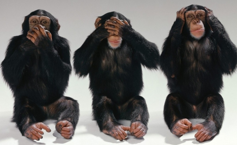 tres-monos-sabios.jpg